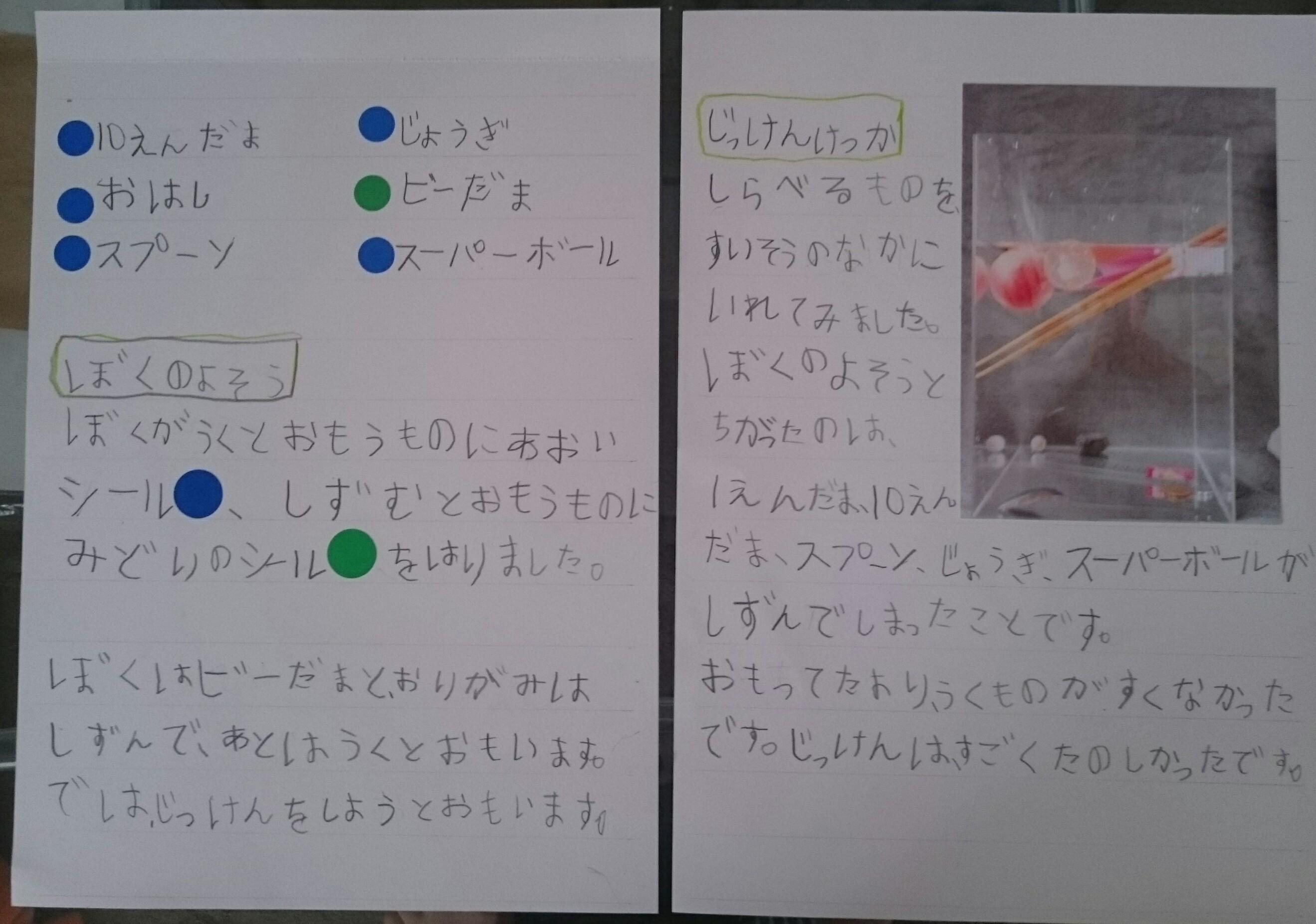 自由研究②